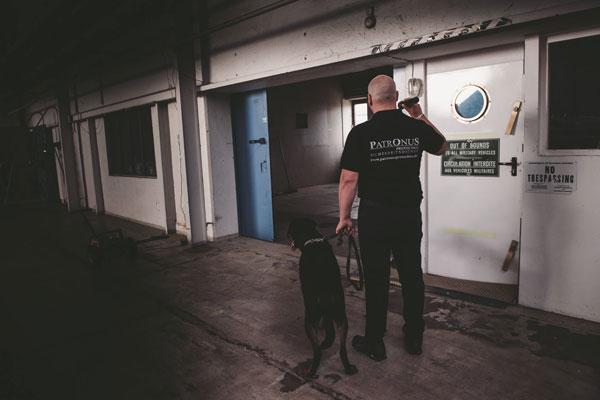 Ein Sicherheitsdienstmitarbeiter mit Hund