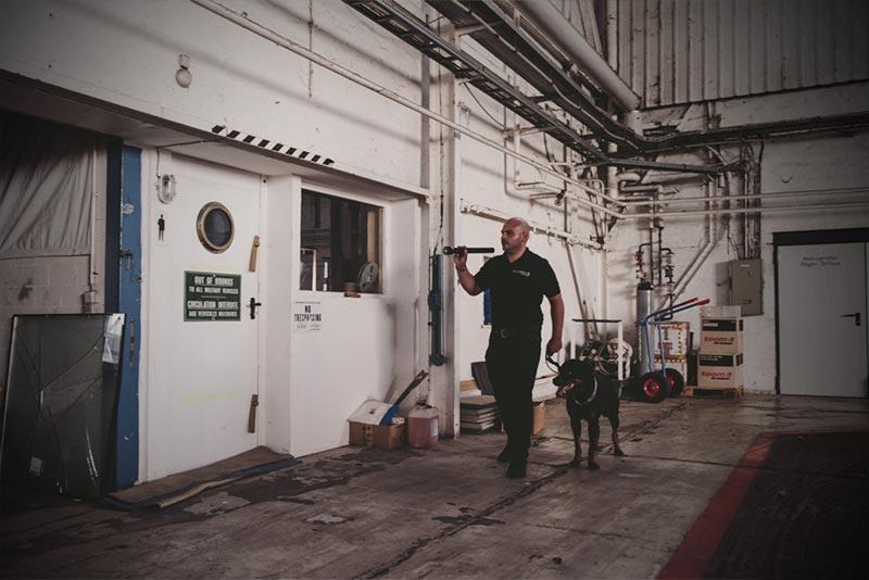 Sicherheitsdienstmitarbeiter mit Hund und Taschenlampe