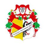 Logo Narrenzunft