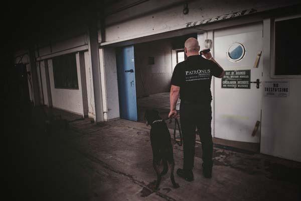 Foto eines Patronus Mtiarbeiters mit Taschenlampe und Hund
